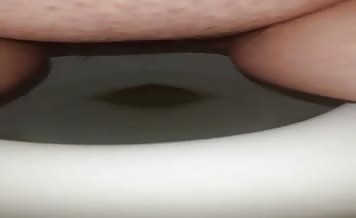 Fat babe shitting in toilet