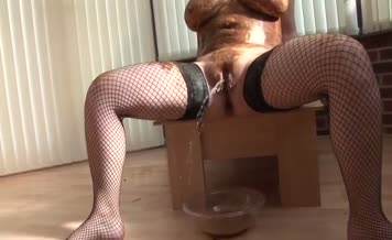 Dark haired babe gives perfect blowjob