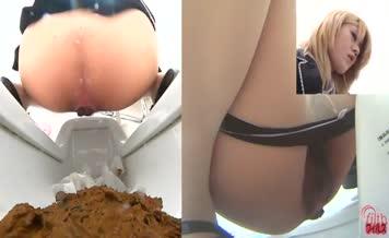 Big pile of shit in public toilet